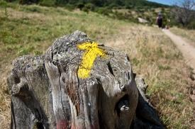 flechas-amarillas-camino-de-santiago